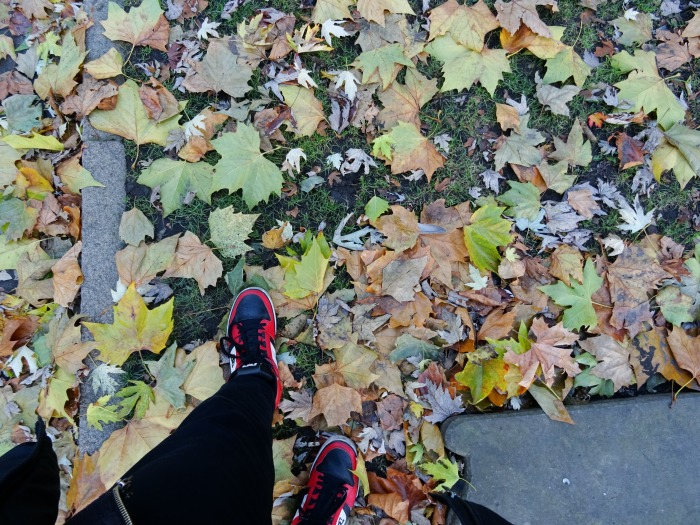 Feet at autumn